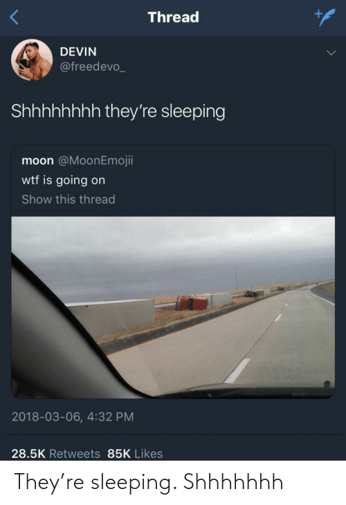 they: They're sleeping. Shhhhhhh