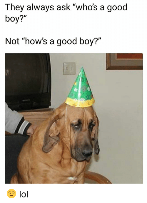 """Funny, Lol, and Good: They always ask """"whos a good  boy?""""  ID  Not """"how's a good boy?"""" 😒 lol"""