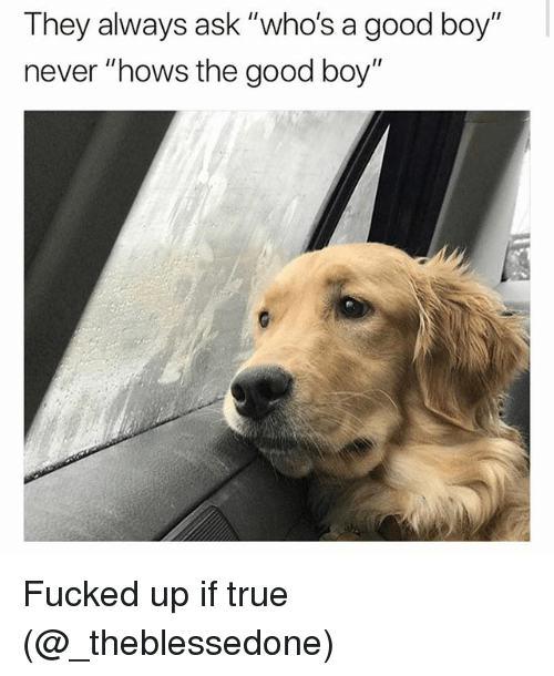"""Memes, True, and Good: They always ask """"who's a good boy  never """"hows the good boy"""" Fucked up if true (@_theblessedone)"""