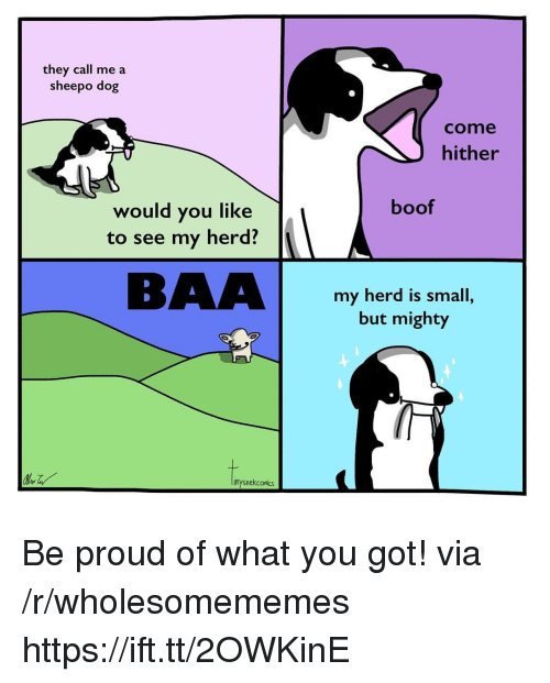 Mighty, Proud, and Boof: they call me a  sheepo dog  come  hither  boof  would you like  to see my herd?  BAAbomi  my herd is small,  but mighty  inysnekcomiks Be proud of what you got! via /r/wholesomememes https://ift.tt/2OWKinE