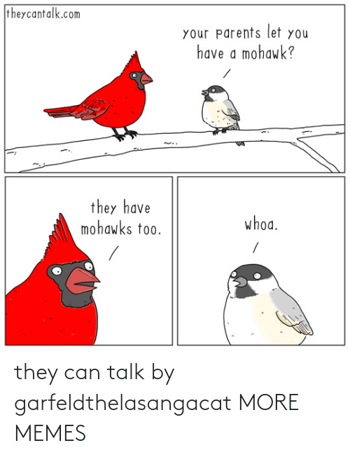 Talk: they can talk by garfeldthelasangacat MORE MEMES