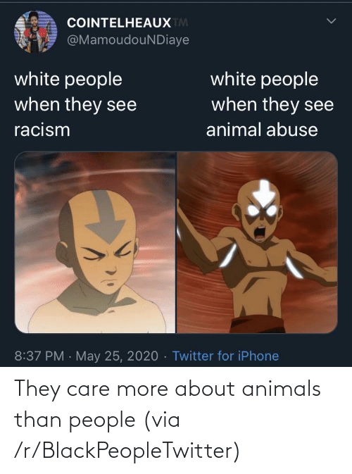 Animals: They care more about animals than people (via /r/BlackPeopleTwitter)