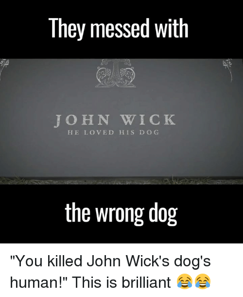 "Dank, John Wick, and Wicked: They messed With  JOHN WICK  HE LOVED HIS D O G  the wrong dog ""You killed John Wick's dog's human!"" This is brilliant 😂😂"