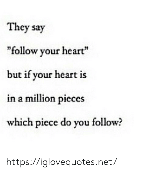 "Heart, Net, and They: They say  ""follow your heart""  but if your heart is  in a million pieces  which piece do you follow? https://iglovequotes.net/"