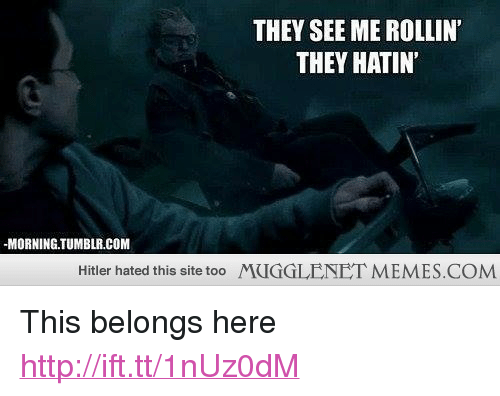 "Rollin They Hatin: THEY SEE ME ROLLIN'  THEY HATIN  -MORNING.TUMBLR.COM  Hitler hated this site too  MUGGLENET MEMES.COM <p>This belongs here <a href=""http://ift.tt/1nUz0dM"">http://ift.tt/1nUz0dM</a></p>"
