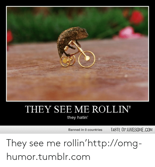 Rollin They Hatin: THEY SEE ME ROLLIN'  they hatin'  TASTE OF AWESOME.COM  Banned in 0 countries They see me rollin'http://omg-humor.tumblr.com