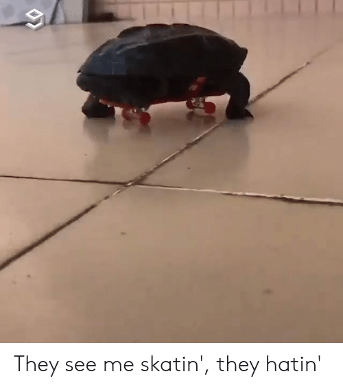 Dank, 🤖, and They: They see me skatin', they hatin'
