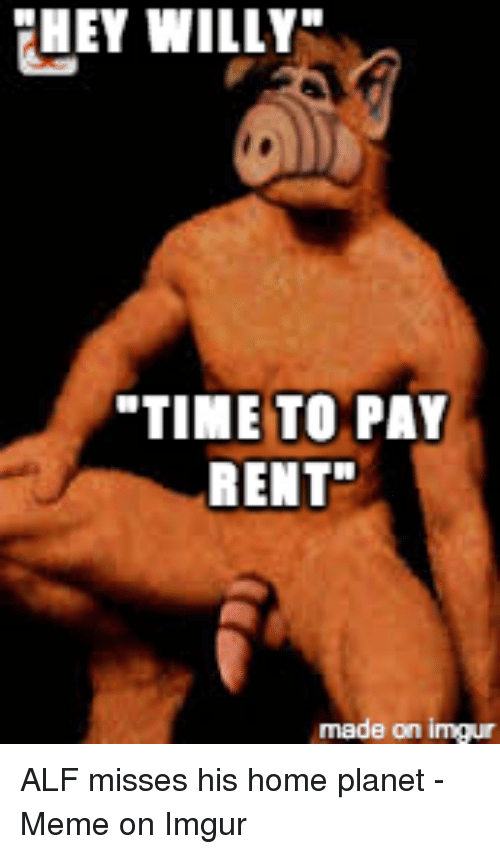 They Willy Time To Pay Rent Made On Inngur Alf Misses His Home
