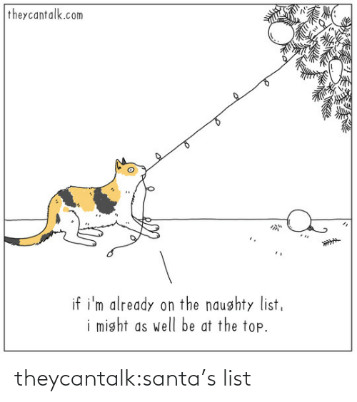 Naughty: theycantalk.com  if i'm already on the naughty list,  i might as well be at the top. theycantalk:santa's list