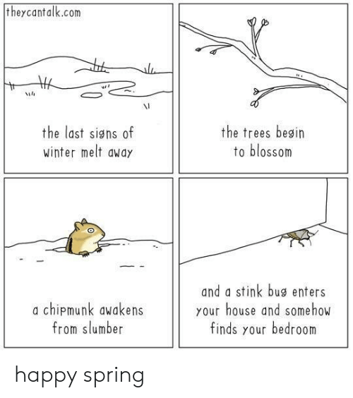 stink: theycantalk.com  VI  the last signs of  winter melt awdy  the trees besin  to blossom  a chipmunk awakens  from slumber  and a stink bug enters  your house and somehow  finds your bedroom happy spring