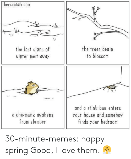 Love, Memes, and Tumblr: theycantalk.com  VI  the last signs of  winter melt awdy  the trees besin  to blossom  a chipmunk awakens  from slumber  and a stink bug enters  your house and somehow  finds your bedroom 30-minute-memes:  happy spring  Good, I love them. 😤