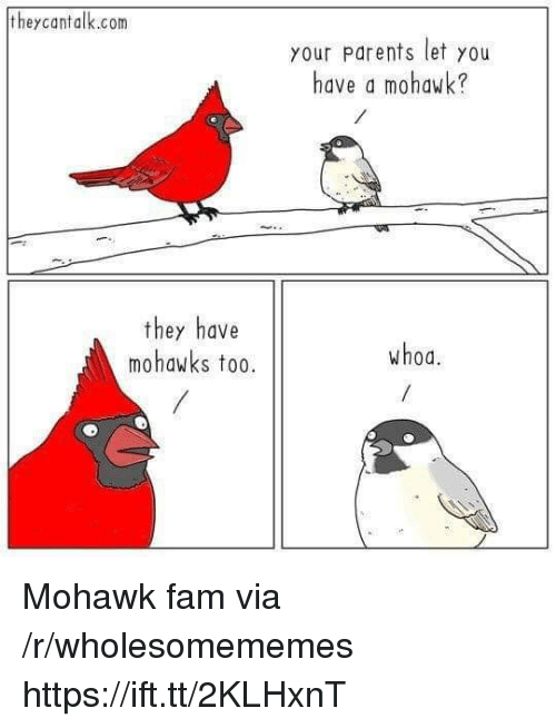 Fam, Parents, and Com: theycantalk.com  your Parents let you  have a mohawk?  they have  mohawks to0.  whoa. Mohawk fam via /r/wholesomememes https://ift.tt/2KLHxnT