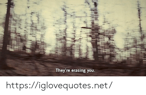 Net, You, and Href: They're erasing you. https://iglovequotes.net/