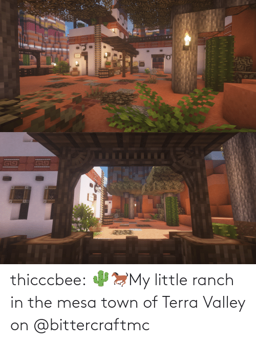 town: thicccbee: 🌵🐎My little ranch in the mesa town of Terra Valley on  @bittercraftmc
