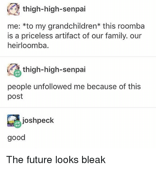 Family, Future, and Memes: thigh-high-senpai  me: *to my grandchildren this roomba  is a priceless artifact of our family. our  heirloomba.  thigh-high-senpai  people unfollowed me because of this  post  joshpeck  good The future looks bleak