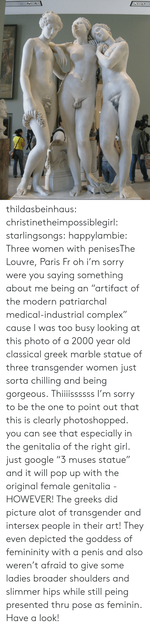 "Have A Look: thildasbeinhaus:  christinetheimpossiblegirl:  starlingsongs:  happylambie:  Three women with penisesThe Louvre, Paris Fr  oh i'm sorry were you saying something about me being an ""artifact of the modern patriarchal medical-industrial complex"" cause I was too busy looking at this photo of a 2000 year old classical greek marble statue of three transgender women just sorta chilling and being gorgeous.  Thiiiissssss  I'm sorry to be the one to point out that this is clearly photoshopped. you can see that especially in the genitalia of the right girl. just google ""3 muses statue"" and it will pop up with the original female genitalia - HOWEVER! The greeks did picture alot of transgender and intersex people in their art! They even depicted the goddess of femininity with a penis and also weren't afraid to give some ladies broader shoulders and slimmer hips while still peing presented thru pose as feminin. Have a look!"