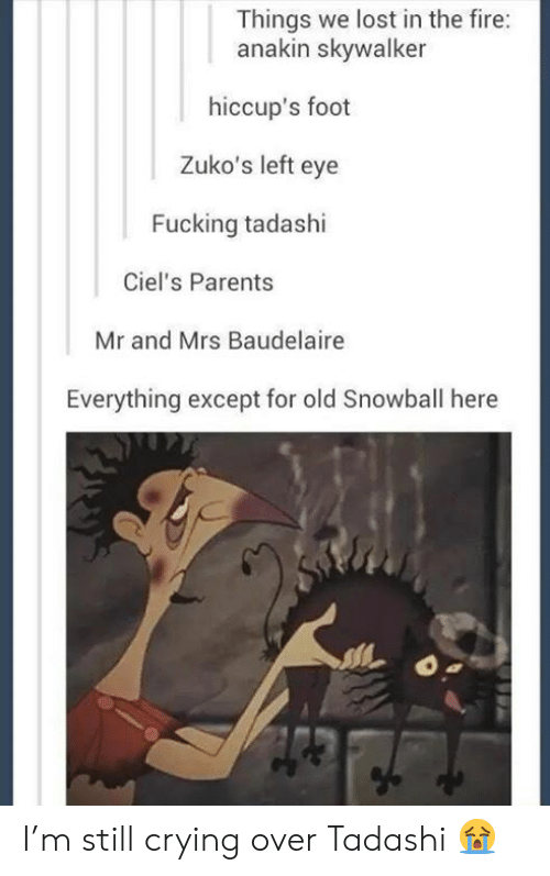 hiccups: Things we lost in the fire:  anakin skywalker  hiccup's foot  Zuko's left eye  Fucking tadashi  Ciel's Parents  Mr and Mrs Baudelaire  Everything except for old Snowball here I'm still crying over Tadashi 😭