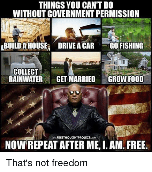 I Am Free: THINGS YOU CANTDO  WITHOUT GOVERNMENT PERMISSION  LBUILDHA HOUSE DRIVEACAR GO FISHING  COLLECT  RAINWATER  GETMARRIED  GROWN FOOD  FREE THOU  GHT PROJECT  NOW REPEAT AFTER ME, I. AM. FREE. That's not freedom