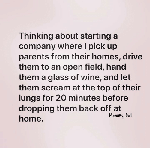 Memes, Parents, and Scream: Thinking about starting a  company where I pick up  parents from their homes, drive  them to an open field, hand  them a glass of wine, and let  them scream at the top of their  lungs for 20 minutes before  dropping them back off at  home  Mommy Owl