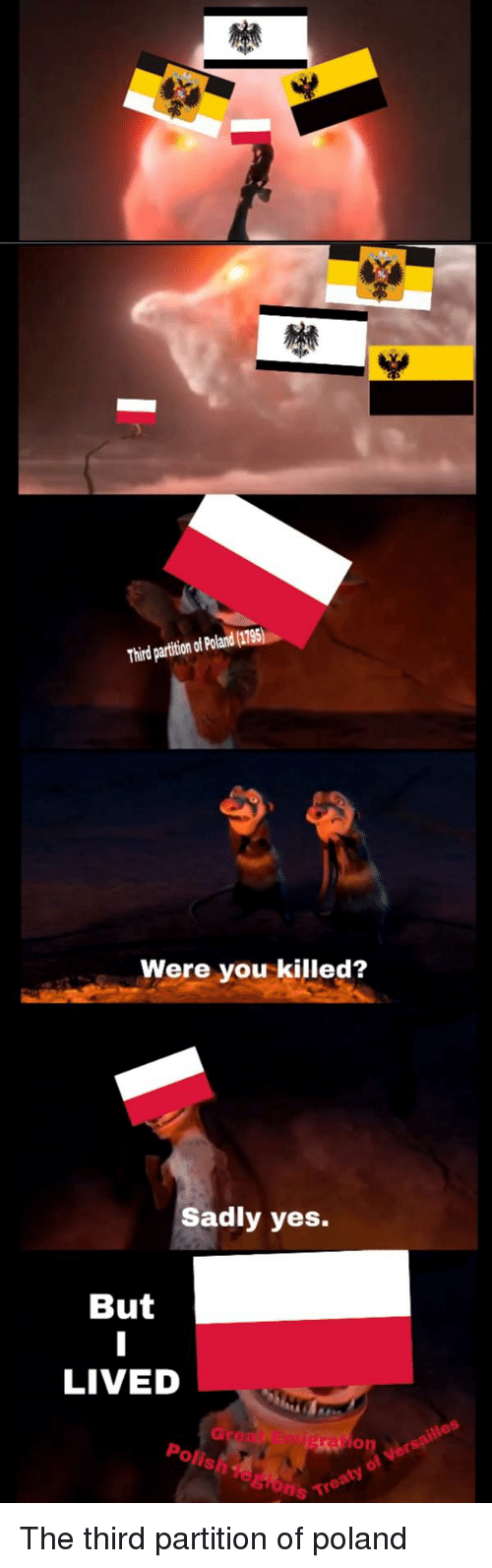 Dank Memes, Poland, and Yes: Third partition of Poland (1795)  Were you killed?  Sadly yes.  But  LIVED  on je  Polis