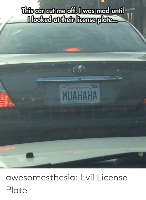 Tumblr, Blog, and Mad: This car cut me off I was mad until  nlooked at their license plate..  OCT  MUAHAHA awesomesthesia:  Evil License Plate