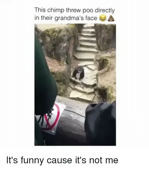 Funny, Memes, and 🤖: This chimp threw poo directly  in their grandma's face It's funny cause it's not me