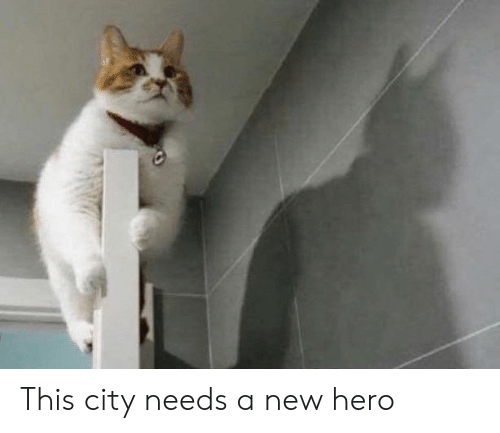 Hero, City, and New: This city needs a new hero