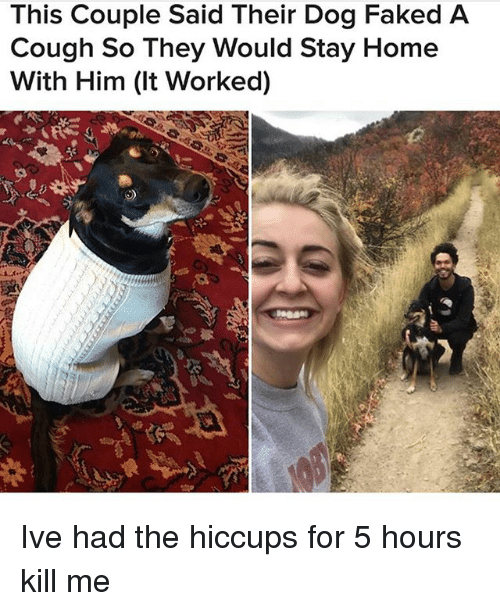 Ironic, Home, and Dog: This Couple Said Their Dog Faked A  Cough So They Would Stay Home  With Him (It Worked) Ive had the hiccups for 5 hours kill me