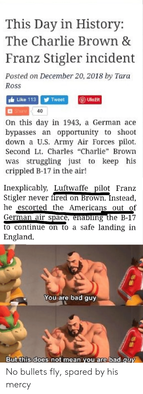 """Bad, Charlie, and England: This Day in History:  The Charlie Brown &  Franz Stigler incident  Posted on December 20, 2018 by Tara  Ross  Like 113 Tweet  Uložit  Share  40  On this day in 1943, a German ace  bypasses an opportunity to shoot  down a U.S. Army Air Forces pilot  Second Lt. Charles """"Charlie"""" Brown  was struggling just to keep his  crippled B-17 in the air!  Inexplicably, Luftwaffe pilot Franz  Stigler never fired on Brown. Înstead,  he escorted the Americans out of  German air space, enabling the B-17  to continue on to a safe landing in  England  You are bad guy  But this does not mean you are bad guy No bullets fly, spared by his mercy"""