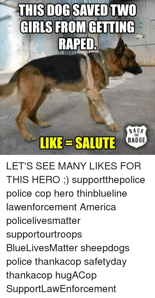 Memes, Police, and Heroes: THIS DOG SAVED TWO  GIRLS FROM  GETTING  RAPED  BACK  THE  LIKE SALUTE  BADGE LET'S SEE MANY LIKES FOR THIS HERO ;) supportthepolice police cop hero thinblueline lawenforcement America policelivesmatter supportourtroops BlueLivesMatter sheepdogs police thankacop safetyday thankacop hugACop SupportLawEnforcement