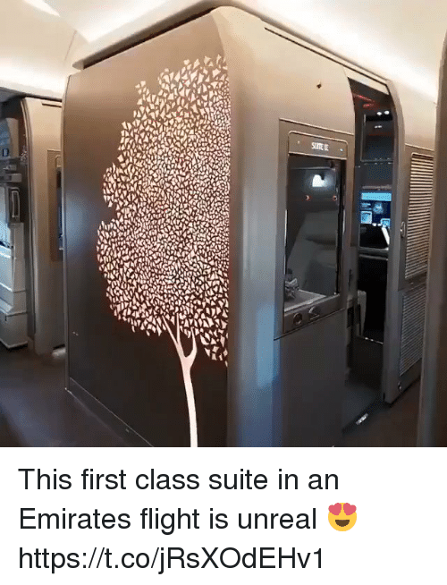 Emirates, Flight, and Girl Memes: This first class suite in an Emirates flight is unreal 😍  https://t.co/jRsXOdEHv1