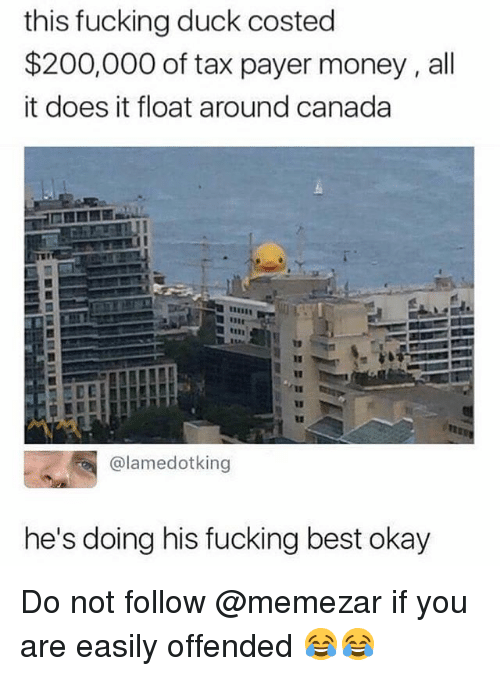 Bailey Jay, Fucking, and Memes: this fucking duck costed  $200,000 of tax payer money, all  it does it float around canada  it  @lamedotking  he's doing his fucking best okay Do not follow @memezar if you are easily offended 😂😂
