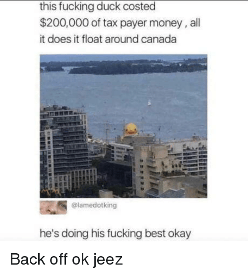 Back Off: this fucking duck costed  $200,000 of tax payer money, all  it does it float around canada  @lamedotking  he's doing his fucking best okay Back off ok jeez