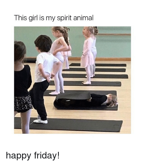 Friday, Animal, and Girl: This girl is my spirit animal happy friday!