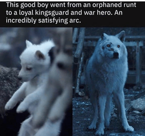 Game of Thrones, Good, and Boy: This good boy went from an orphaned runt  to a loyal kingsguard and war hero. An  incredibly satisfying arc.