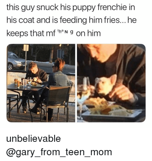 Memes, Puppy, and Teen Mom: this guy snuck his puppy frenchie in  his coat and is feeding him fries...he  keeps that mf th N g on him unbelievable @gary_from_teen_mom