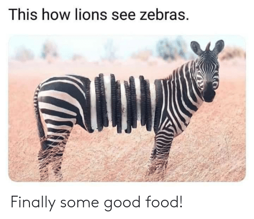 Food, Good, and Lions: This how lions see zebras. Finally some good food!