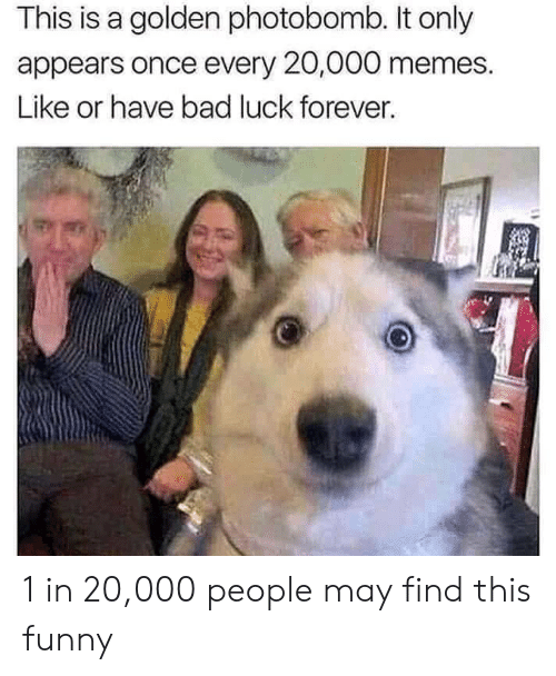 Bad Luck: This is a golden photobomb. It only  appears once every 20,000 memes.  Like or have bad luck forever. 1 in 20,000 people may find this funny