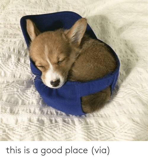 A Good: this is a good place(via)