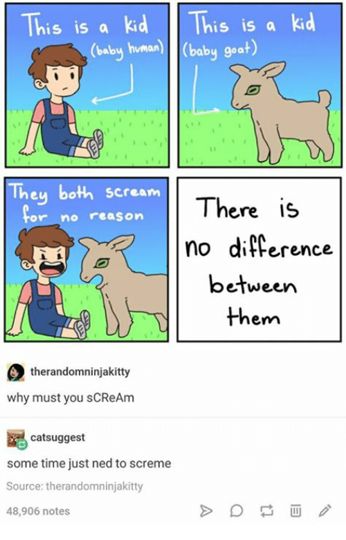 Baby Goat: This is a kid is is a kid  y human) (baby goat)  They both scream  There is  or no reason  no difference  between  them  therandomninjakitty  why must you sCReAm  catsuggest  some time just ned to screme  Source: therandomninjakitty  48,906 notes
