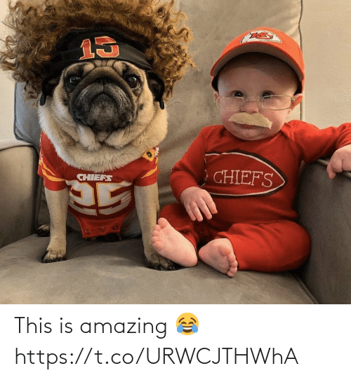 sports: This is amazing 😂 https://t.co/URWCJTHWhA