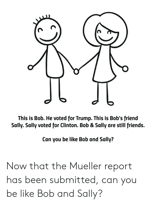 Still Friends: This is Bob. He voted for Trump. This is Bob's friend  Sally. Sally voted for Clinton. Bob & Sally are still friends.  Can you be like Bob and Sally? Now that the Mueller report has been submitted, can you be like Bob and Sally?