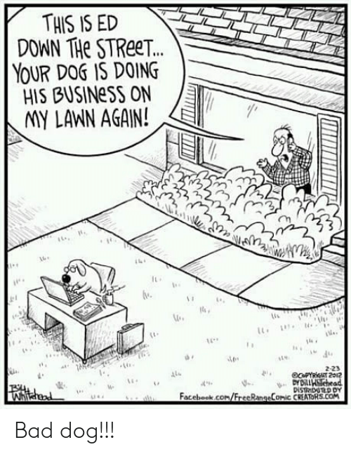 Bad, Facebook, and Business: THIS IS ED  DOWN THe STReeT.  YOUR DOS IS DOING  HIS BUSINeSS ON  IMY LANN AGAIN!  2  lu  2-23  4  Facebook.com/FrecRangeComic CREATORS.COM Bad dog!!!