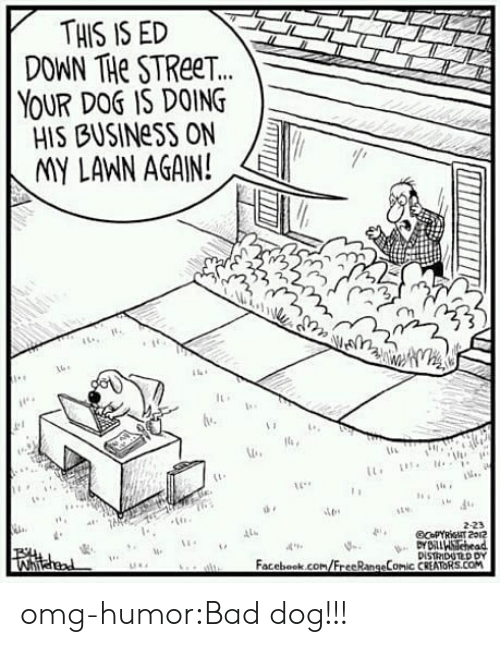 Bad, Facebook, and Omg: THIS IS ED  DOWN THe STReeT.  YOUR DOS IS DOING  HIS BUSINeSS ON  IMY LANN AGAIN!  2  lu  2-23  4  Facebook.com/FrecRangeComic CREATORS.COM omg-humor:Bad dog!!!