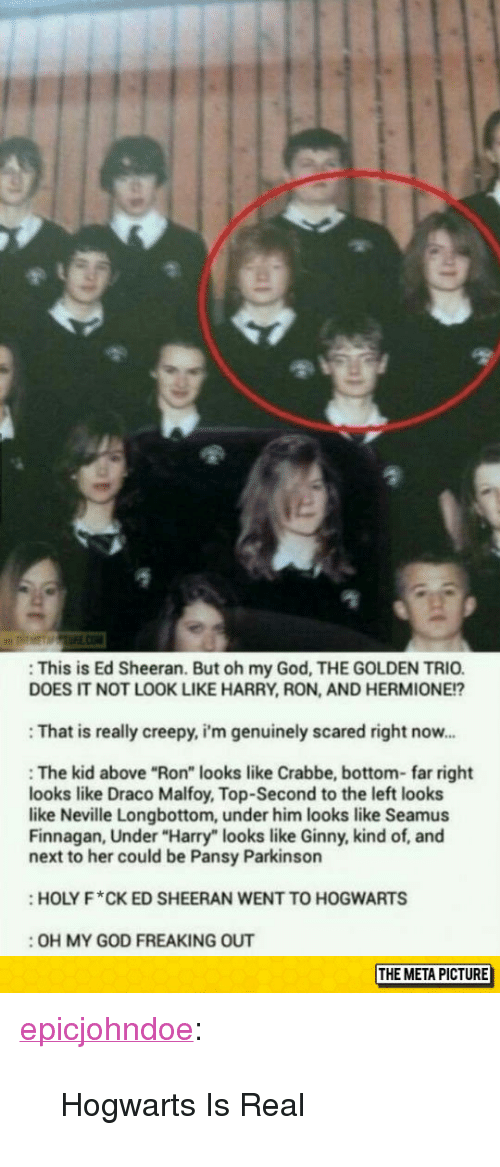"Creepy, God, and Hermione: : This is Ed Sheeran. But oh my God, THE GOLDEN TRIO  DOES IT NOT LOOK LIKE HARRY, RON, AND HERMIONE!?  : That is really creepy, i'm genuinely scared right now..  : The kid above ""Ron"" looks like Crabbe, bottom- far right  looks like Draco Malfoy, Top-Second to the left looks  like Neville Longbottom, under him looks like Seamus  Finnagan, Under ""Harry"" looks like Ginny, kind of, and  next to her could be Pansy Parkinson  HOLY F*CK ED SHEERAN WENT TO HOGWARTS  :OH MY GOD FREAKING OUT  THE META PICTURE <p><a href=""https://epicjohndoe.tumblr.com/post/172828646379/hogwarts-is-real"" class=""tumblr_blog"">epicjohndoe</a>:</p>  <blockquote><p>Hogwarts Is Real</p></blockquote>"