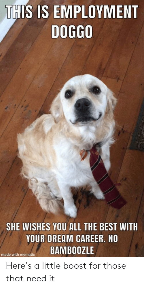 Best, Boost, and All The: THIS IS EMPLOYMENT  DOG8O  SHE WISHES YOU ALL THE BEST WITH  YOUR DREAM CAREER, NO  e with menateBAMBOOZLE Here's a little boost for those that need it