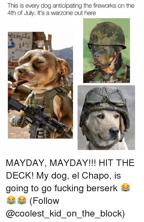 Chapo: This is every dog anticipating the fireworks on the  4th of July. It's a  warzone out here  C E MAYDAY, MAYDAY!!! HIT THE DECK! My dog, el Chapo, is going to go fucking berserk 😂😂😂 (Follow @coolest_kid_on_the_block)