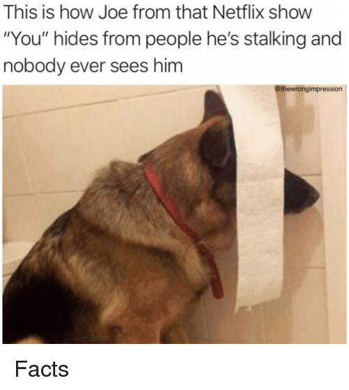 """Facts, Netflix, and Stalking: This is how Joe from that Netflix show  """"You"""" hides from people he's stalking and  nobody ever sees him  @thewrongimpression Facts"""