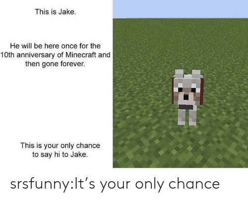 Minecraft, Tumblr, and Blog: This is Jake.  He will be here once for the  10th anniversary of Minecraft and  then gone forever.  This is your only chance  to say hi to Jake. srsfunny:It's your only chance