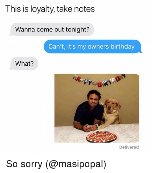 Birthday, Memes, and Sorry: This is loyalty, take notes  Wanna come out tonight?  Can't, it's my owners birthday  What?  Delivered So sorry (@masipopal)